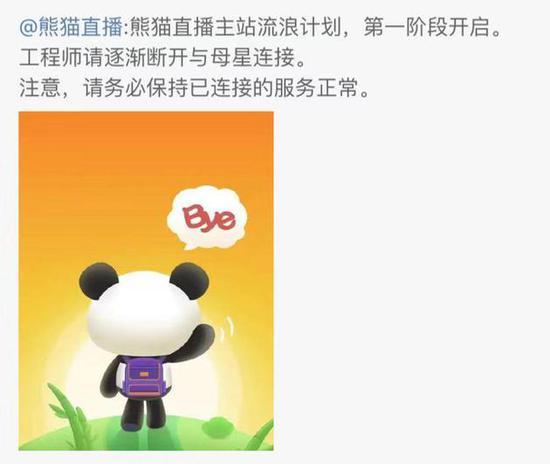 突然破产,熊猫直播是怎么黄的?